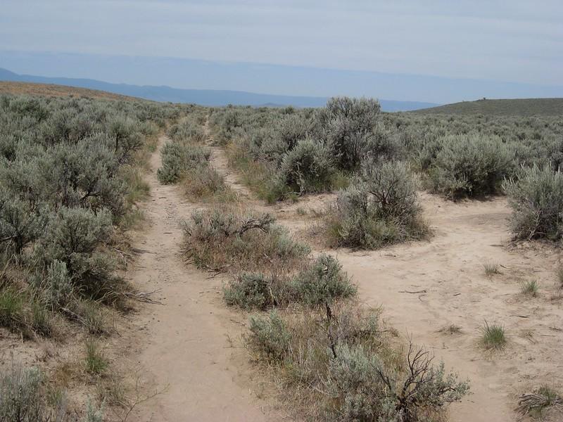 Oregon trail wagonwheel ruts