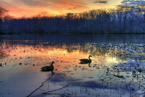 sunset ny night geese cloudy explore millpond wantagh
