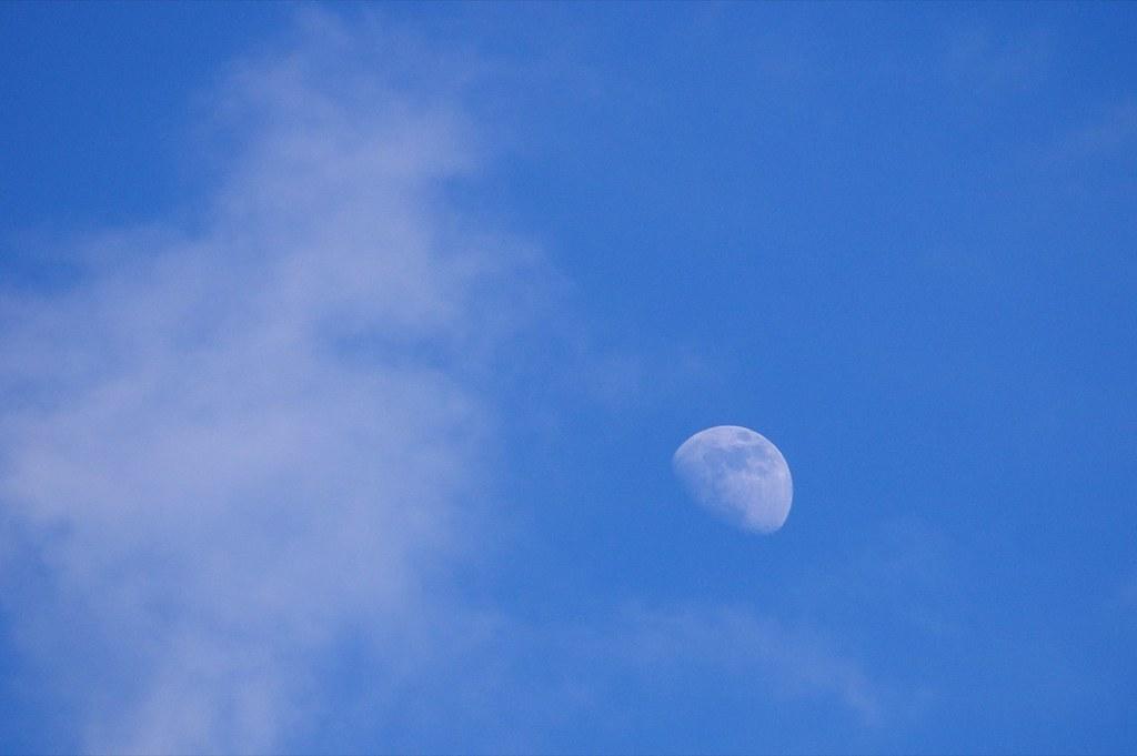 Księżyc buja w obłokach / Moon is jumping the clouds