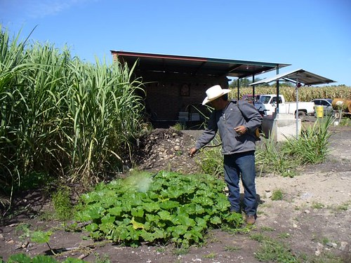 ecuador-organic-farming | by GaryAScott