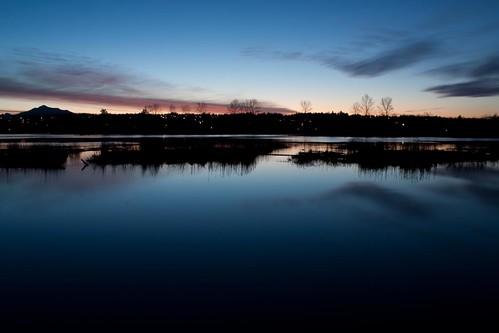 nature water sunrise washington waterfront wildlife tide places february everett spencerisland canonxsi everettflickrphotostroll efps