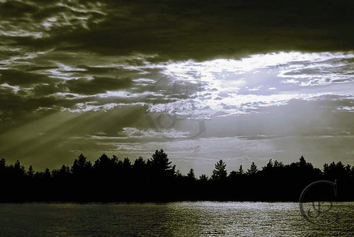 trees sunset ontario nature clouds landscape basslake orillia