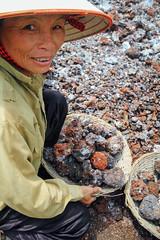 Woman Collecting Calcium Carbonate