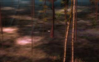 fawnwoods