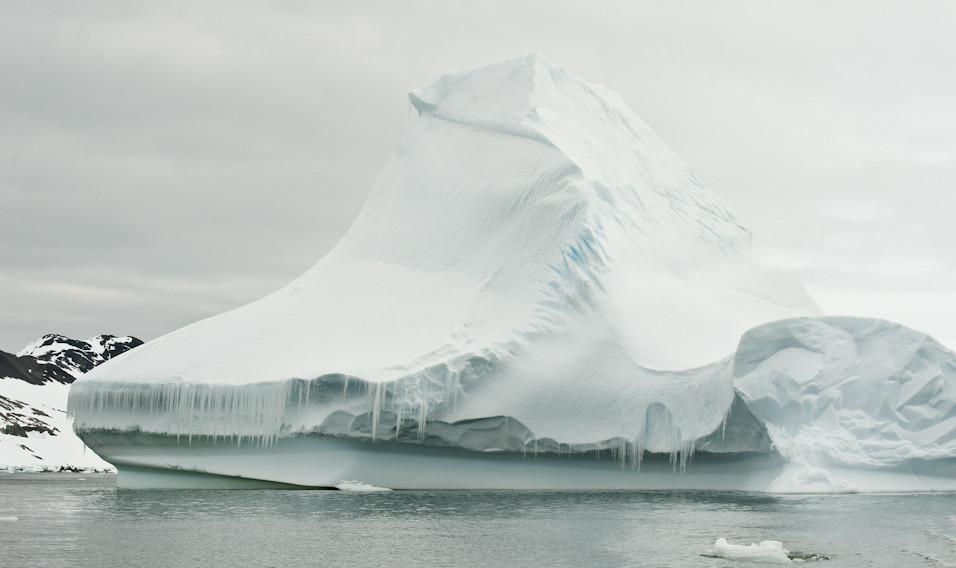 Ice Shoe