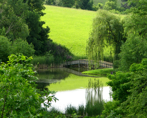 bridge trees color green nature water june canon landscape pond natural country iowa powershot willow g9 abigfave platinumphoto canong9 rubyphotographer don3rdse