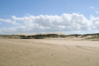 Ninety Mile Beach   by Strange Ones