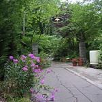 Arboretum Entrance