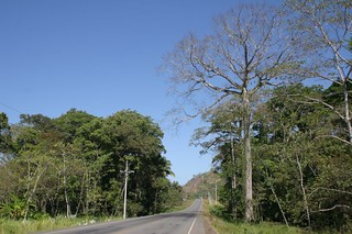 Tropical cycling in Costa Rica. Bird song's everywhere! | by Nicolai Bangsgaard