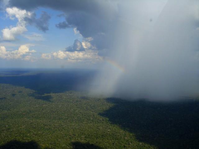 Chuva na Amazônia(Amazonas-Brasil)1
