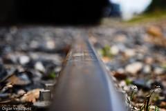 Rail   by Oscarcillo