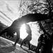 Capoeira Romance by brefoto