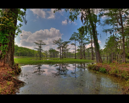 trees reflection sc water landscape moss pond southcarolina spanish hanging lakeview hdr gitzo photomatix 7exposure arcatech gt2531 pagesmillpond nikonafsnikkor1635mmf4gedvr