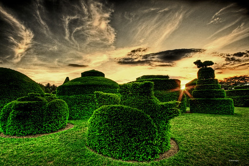garden greenery sky horizon horizons bushes bush hedges trimmed sculpted sculpture art artistic evening dusk daybreak grass grassy beauty beautiful magic magical nature goldenheartaward bestphotography stockimages fun wallpaper topphotography topphotographer awardwinning tylerschoolofart rhodeislandschoolofdesign mood topexplore best2016image best2017image bestexplorepicture bestflickrimage bestflickrphotograph topflickrimage wonder brightening topflickr bestflickr outdoors wealth americancities happy artofphotography artphotography stock acclaimed thearts artwork fineart backgrounds topbackgrounds wallpapersfun stockingtops stockings artist sunset red light sunsetsky sunsets sunlight redsky cities street pantyhose wallpapersofaphotographer