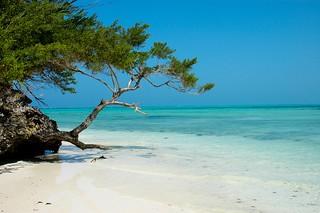 Pongwe Beach Head   by Mr Martineau