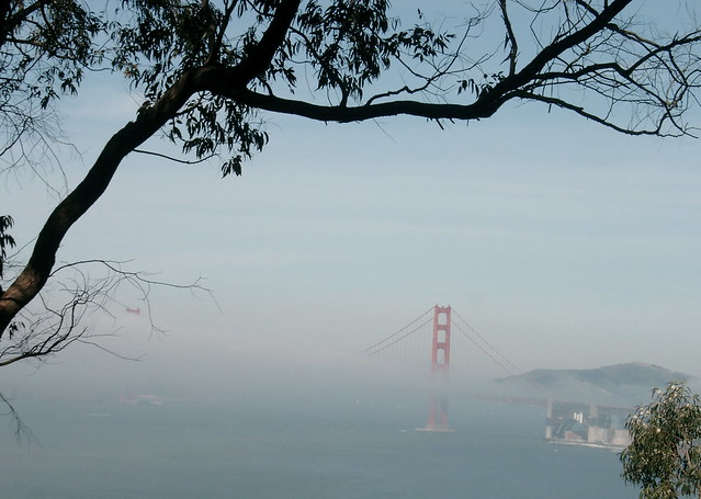 GG Bridge in the fog