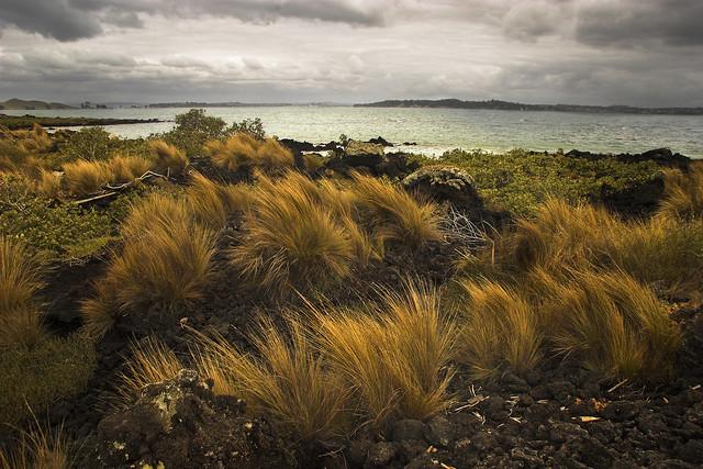 Hauraki Gulf from Rangitoto Island.
