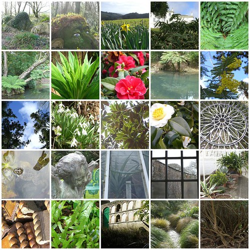 heligan Mosaic | by Fimb