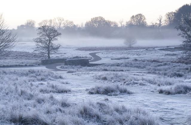 Bradgate Frost
