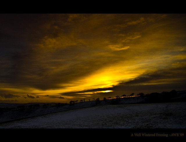 A Well Wintered Evening