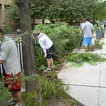 Demonstration of Healthy Landscape Gardening