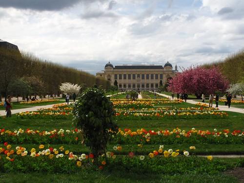 Jardin des Plantes Paris : l'évolution des sciences naturelles