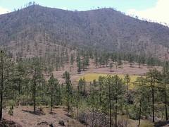 Cerro El Carnero Paragliding