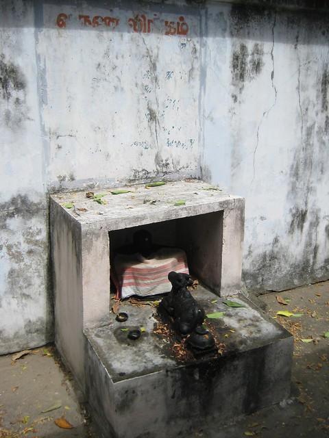 3.Varuna Lingam