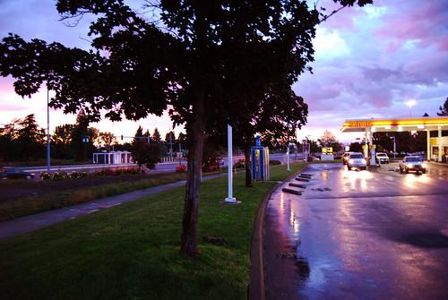 sunset summer rain cat 88 2008 yellowbird beelee baileyweaver baileyraeweaver baileyonflickr baileyraephotography baileysjunk