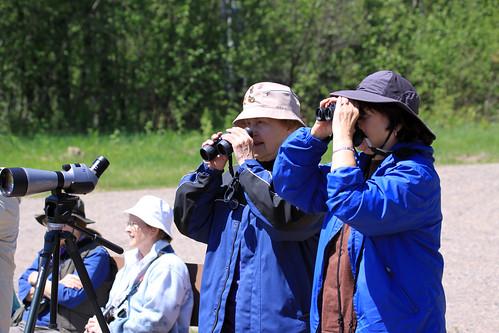 Elderhostel Birding