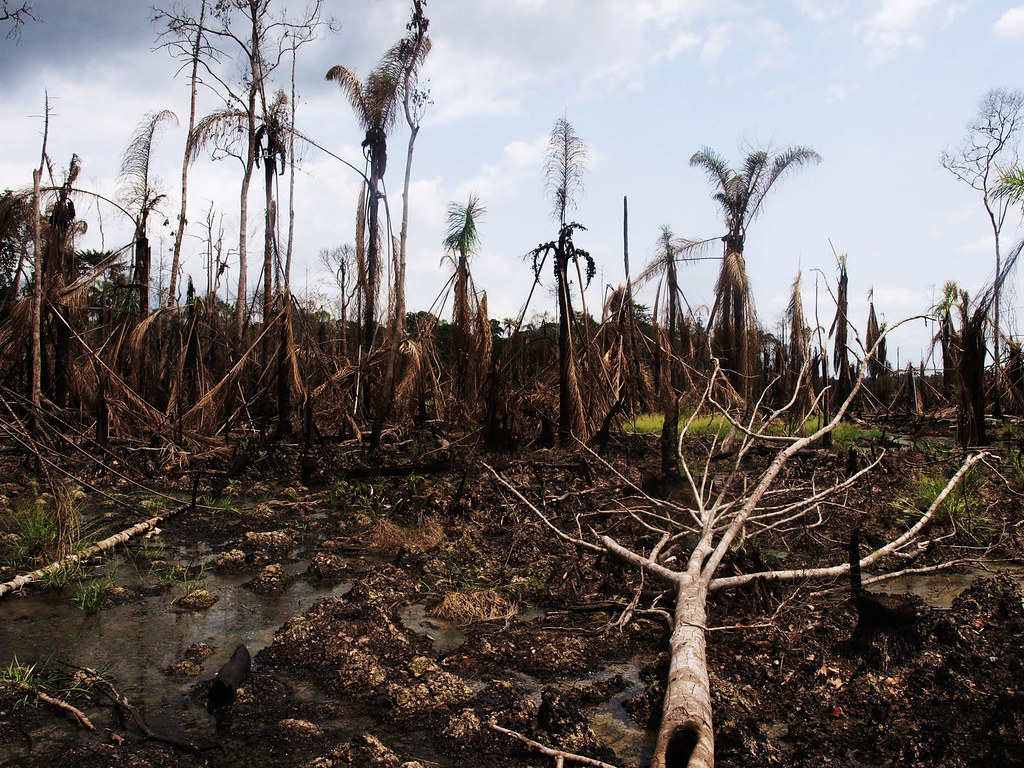 Niger Delta oil disaster