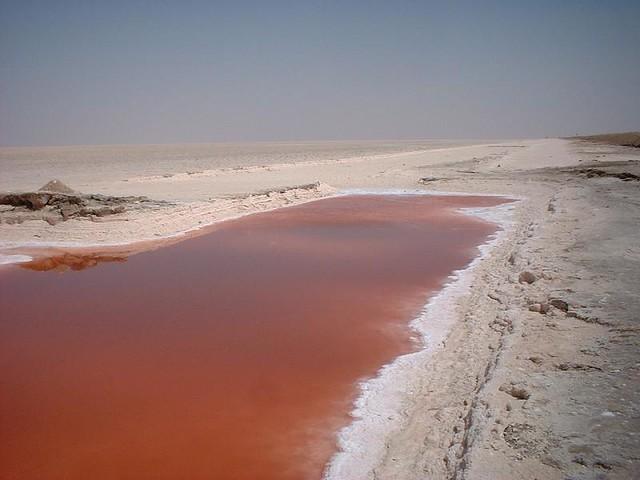 Salt Lake Tunisia