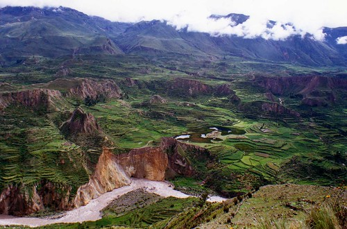 Terraces along Colca Canyon | by wallygrom
