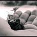 LETS GROW TOGETHER by Diganta Talukdar