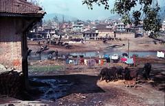Kathmandu Nepal Rural Scene Feb 1990  312