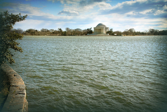 The Potomac Tidal Basin