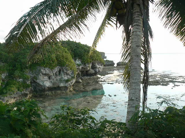 Image result for niue""