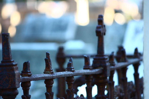 grave fence bokeh perth westernaustralia hbw sooc canoneos450d fremantlecemetery canonefs55250mmf456is 365oneyearon rememberingtoby♥