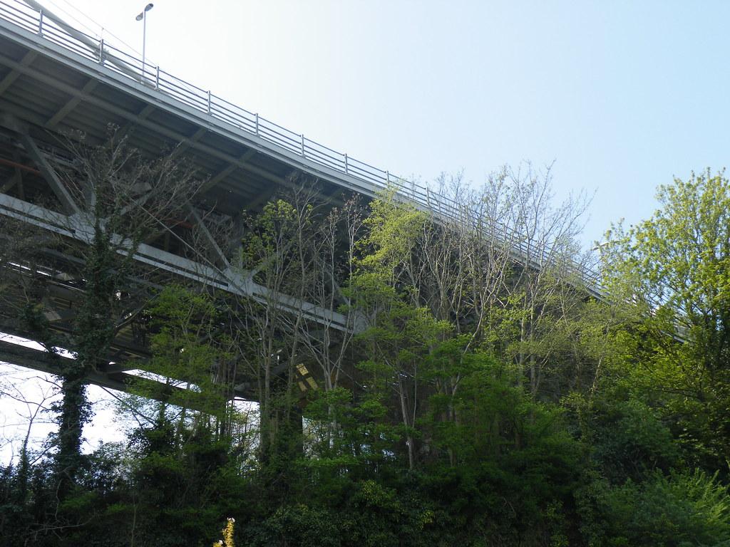 Tamar Bridge from below