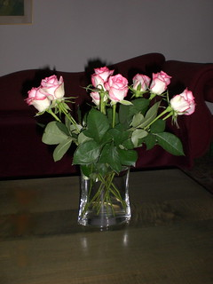 Roses 1. Going back to basic Art | by nurit_manor