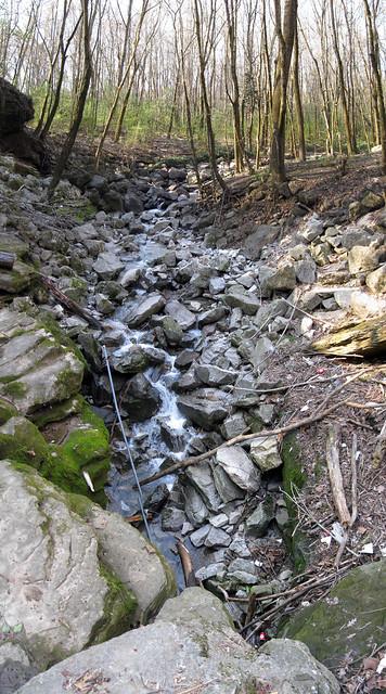 Breedings Mill Branch Creek entering Ensor Sink, Cookeville, TN