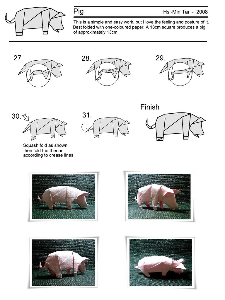 diagram    of my pig  3    My blog  twmyblogyahoo