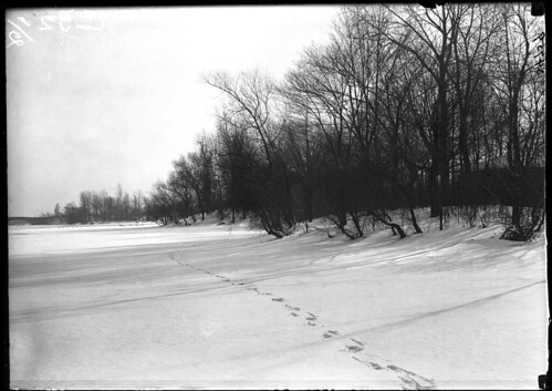 Footprints in the snow | by The Field Museum Library