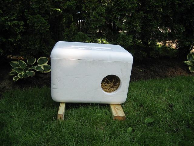Styrofoam Box Shelter