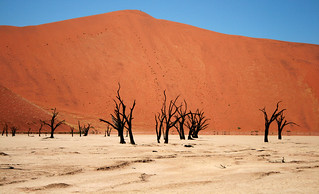 Namib Desert Deadvlei | by sntgmdm