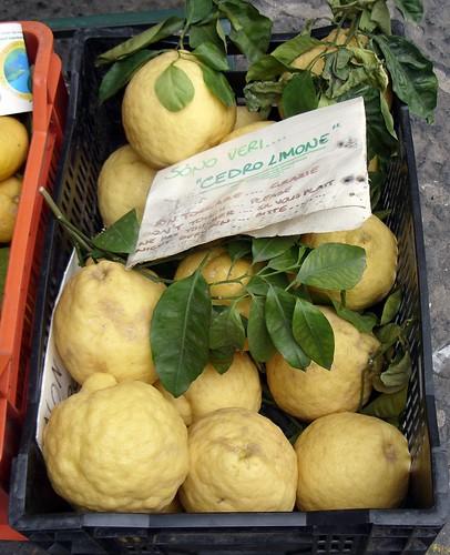 Lemons in Amalfi