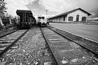 Trenes descansado // Resting trains