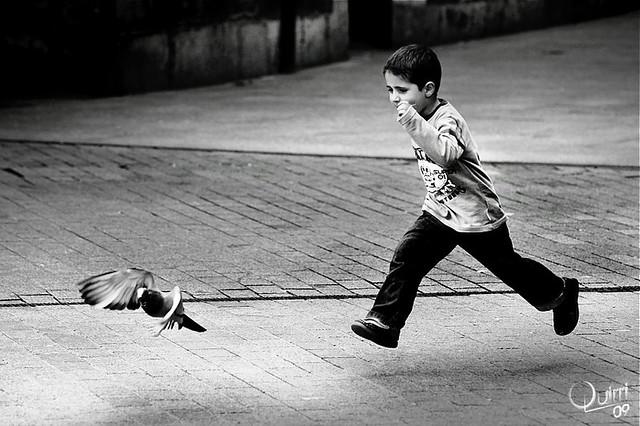 Aprendiendo a volar (para Sergio Murria)