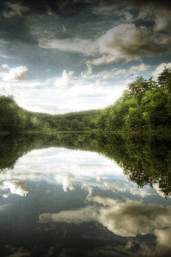 park trees summer sky lake reflection texture water clouds forest photoshop landscape pond woods massachusetts newengland surreal peaceful wideangle memory serene hdr fitchburg canonefs1785mm 40d patrickcampagnone