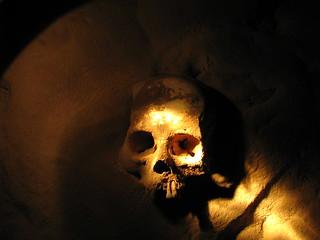 Skull in ATM | by Runningbrook Farms
